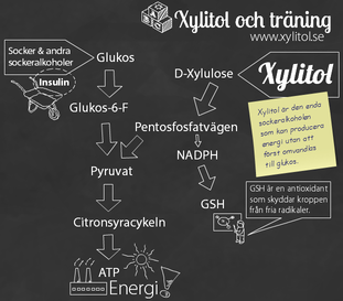 Xylitol ATP